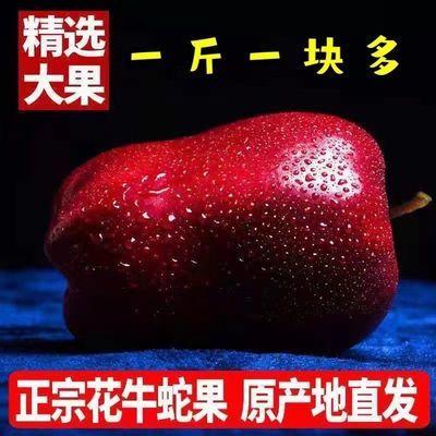 甘肃天水花牛苹果水果5斤老人宝宝辅食刮泥粉面精选蛇果整箱批发