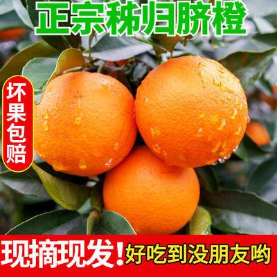 秭归脐橙橙子新鲜水果当季整箱10斤精品大果纽荷尔橙子甜橙子批发