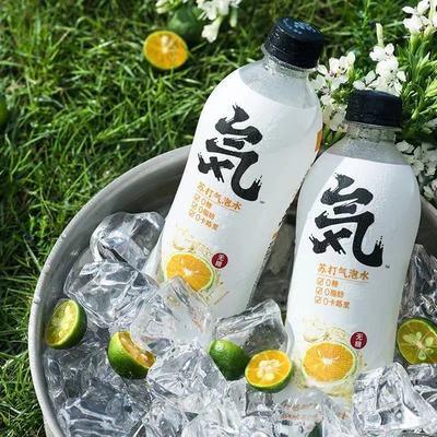 元气森林乳酸菌 卡曼橘 青瓜 酸梅汁苏打气泡水480ml/瓶0糖0脂0卡