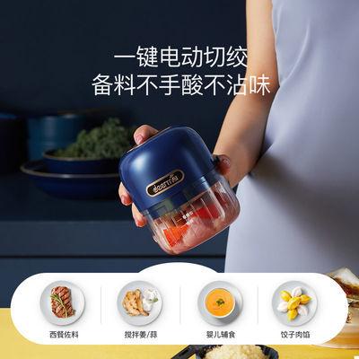 41156/德尔玛捣蒜器电动迷你绞蒜器小型绞肉打蒜家用搅蒜器辅食机JS200