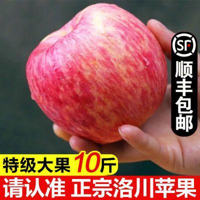 洛川苹果正宗陕西苹果红富士苹果10斤装脆甜新鲜苹果水果批发5斤