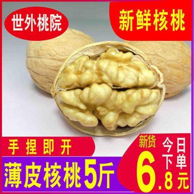 新疆薄皮核桃2020新货优质新鲜薄壳干果批发大坚果多规格孕妇零食