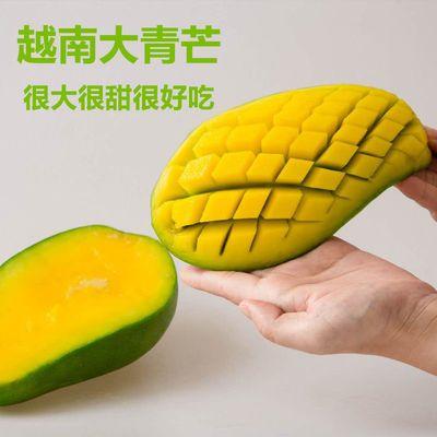 越南大青芒大果新鲜水果当季甜心应季肉厚青皮芒果大青芒芒果好吃