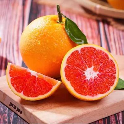 【屈公鲜橙】湖北秭归现摘现发秭归血橙新鲜水果橙子9/5斤包邮
