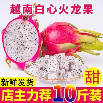 热带进口越南火龙果白心10斤包邮新鲜水果时令当季整箱白肉批发