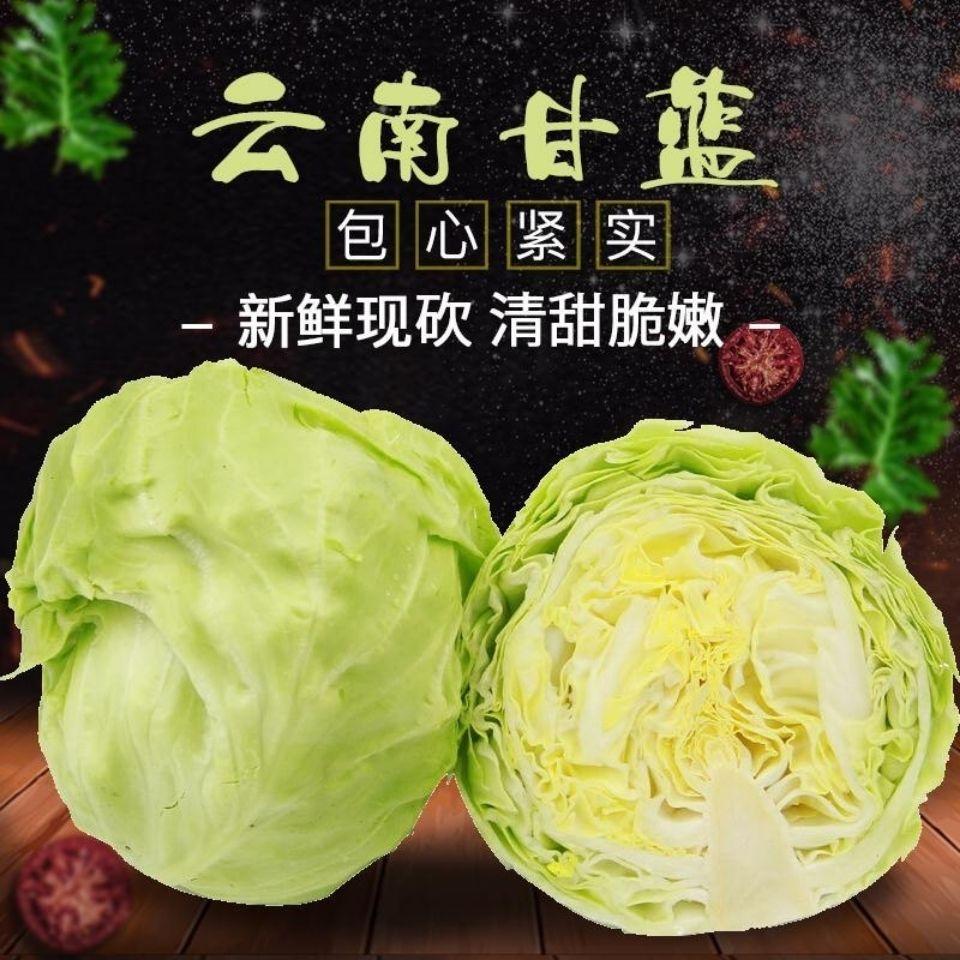 农家自种新鲜绿甘蓝圆心包菜