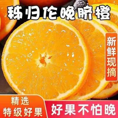 【春橙伦晚】湖北秭归脐橙新鲜橙子孕妇水果当季非四川赣南冰糖橙