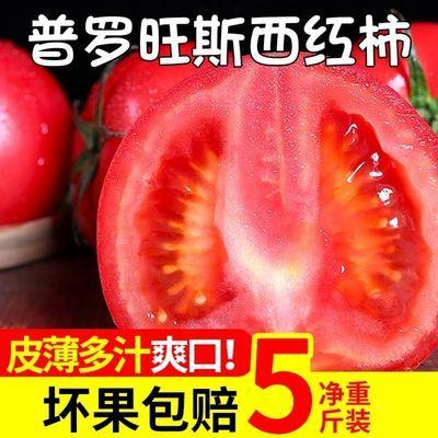 云南自然熟水果沙瓤西红柿生吃番茄批发应季新鲜蔬菜配送包邮