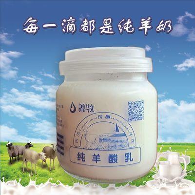 城步南山牧场 羴牧羊奶酸奶 原味低温酸奶140ml*12瓶