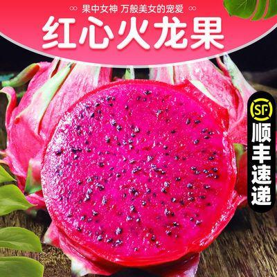 火龙果红心5斤越南新鲜水果当季整箱包邮现摘金都一号火龙果批发