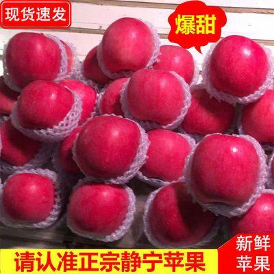75939/正宗甘肃静宁红富士苹果精品脆甜多汁新鲜果整箱产地直发坏果包赔