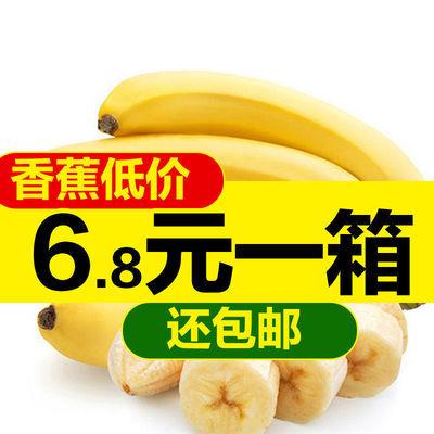 批发云南香蕉新鲜水果应季特产孕妇高山香蕉米蕉市场特价包邮