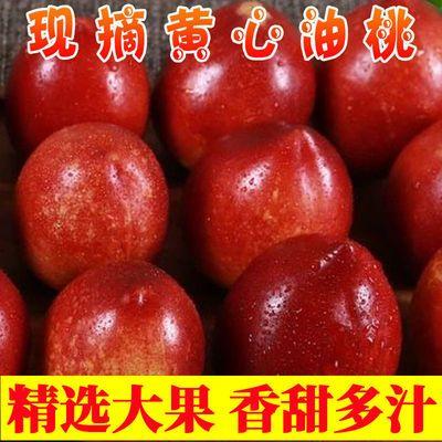 39700/黄心油桃新鲜大肉桃子孕妇水果当季1/3/5斤包邮脆甜水密桃非毛桃