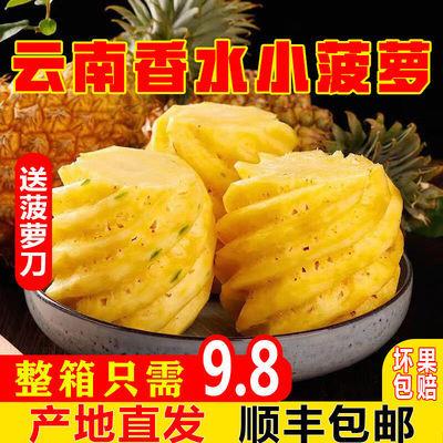 【顺丰包邮】云南香水小菠萝3/5/9斤新鲜当季热带水果菠萝凤梨