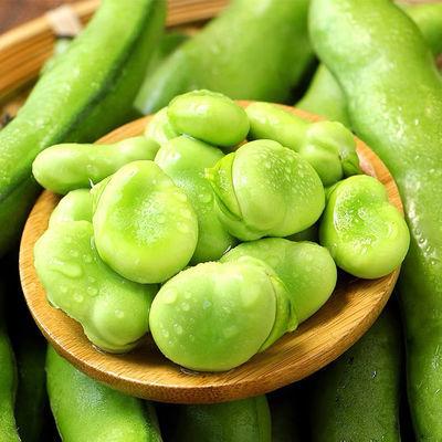 云南新鲜毛豆青蚕豆带壳蔬菜类罗汉豆兰花胡豆佛南豆竖豌豆蔬菜