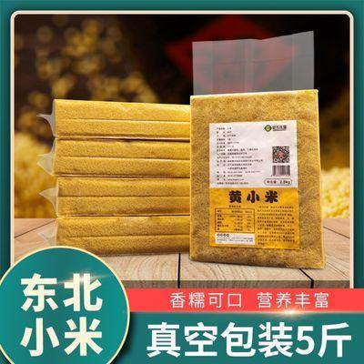 新米黄小米批发5斤宝宝米孕妇月子米东北特产五谷杂粮米粥养胃1斤