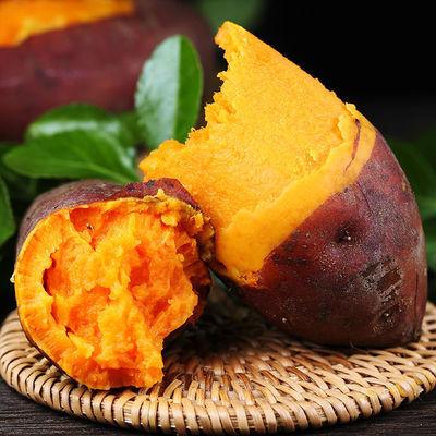 沙地蜜薯糖心红薯新鲜番薯10 包邮烟薯25号农家流油地瓜板栗整箱