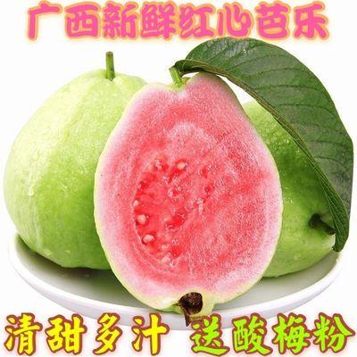 75724/番石榴广西新鲜当季水果红心芭乐果番石榴水果软糯香甜整箱包邮
