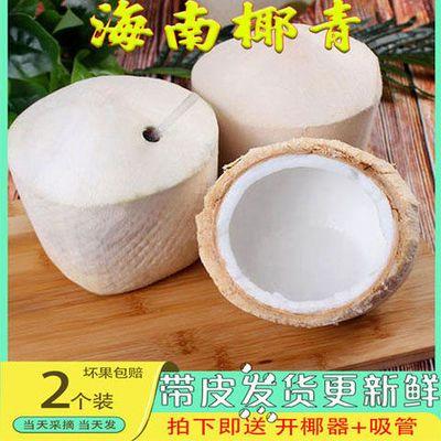 海南椰子纯天然新鲜椰青孕妇儿童当季整箱大果全国包邮老椰子嫩椰
