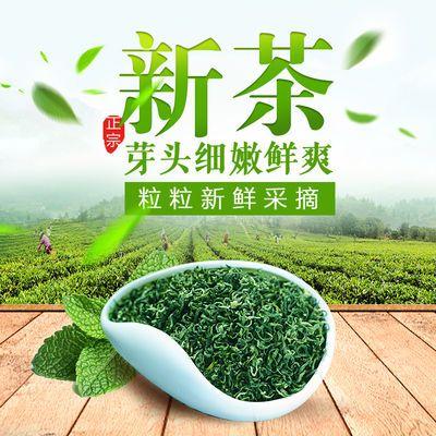绿茶2020新茶叶高山绿茶日照足明前春茶浓香型耐泡散装袋装绿茶叶