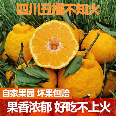 正宗四川不知火丑橘桔子新鲜当季水果丑八怪蜜橘子耙耙柑整箱包邮