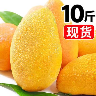 现摘海南芒果小台芒新鲜时令水果当季整箱热带树上熟台农批发包邮