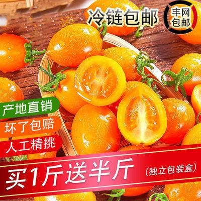 【冷链包邮】黄色圣女果新鲜蔬菜迷彩小番茄西红柿千禧水果