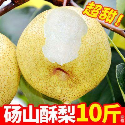 【新店】砀山梨子水果批发梨子皮薄 超甜雪梨批发 一整箱10/5/3斤