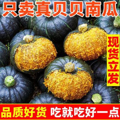 真贝贝南瓜 粉面香甜 新鲜蔬菜 3/5包邮非板栗南瓜