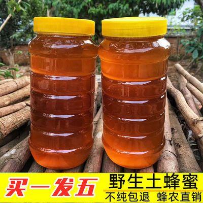 天然正宗蜂蜜深山野生土蜂蜜农家自产蜂场直发纯正百花洋槐枣花蜜