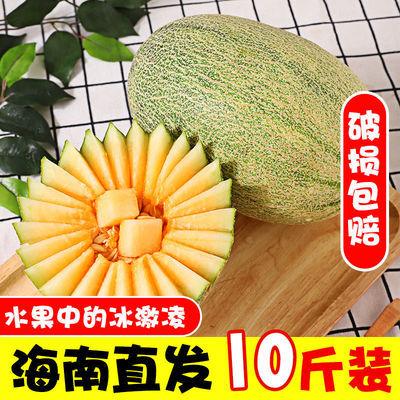 海南爆甜哈密瓜批发新鲜水果包邮原产地网纹瓜脆甜大果蜜瓜专卖店