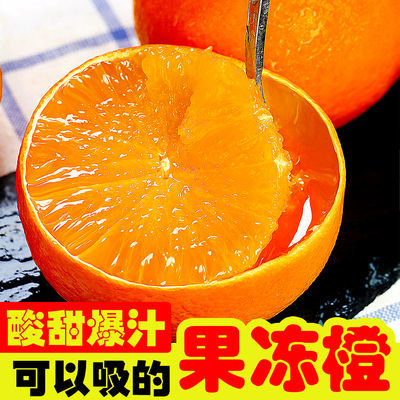 10020/四川青见果冻橙爱媛橙子非38号现摘薄皮当季新鲜应季水果批发10斤