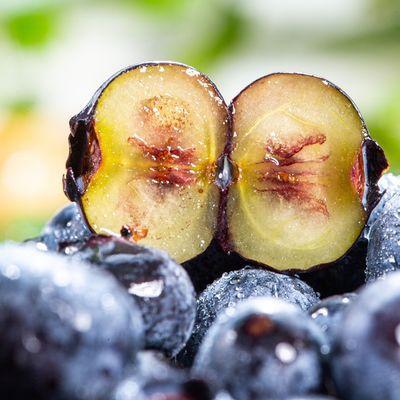 现货当天现摘现发云南露天蓝莓新鲜蓝莓果蓝莓批发应季水果新鲜