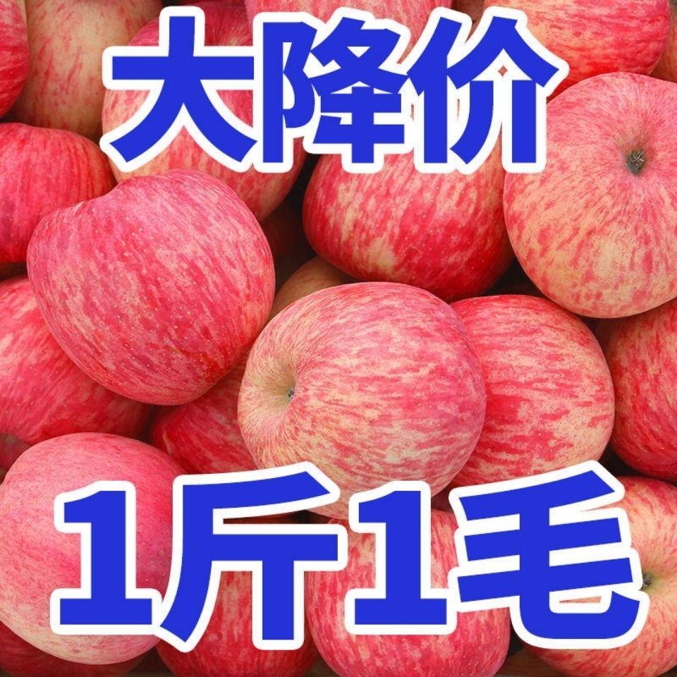 【批发价】苹果水果冰糖心红富士丑苹果脆甜10斤新鲜当季平果批发