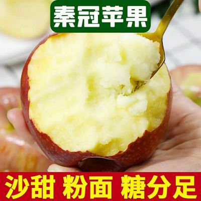 山西老树秦冠粉面苹果刮泥宝宝香甜新鲜水果冰糖心丑苹果整箱批发
