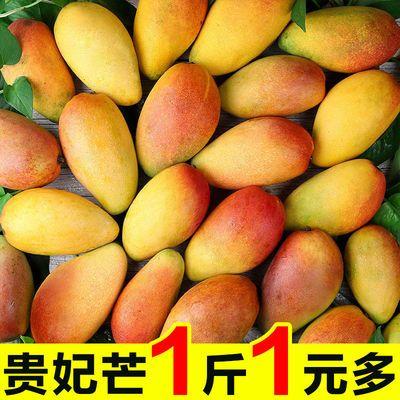 海南贵妃芒果3/5/8斤红金龙当季热带水果新鲜水果孕妇红金龙包邮