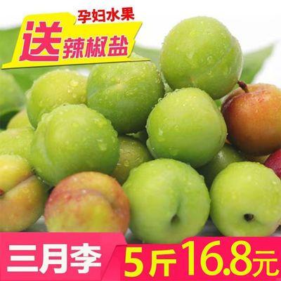 三月李子孕妇水果当季新鲜李子酸脆李子青李脆水果批发送辣椒盐