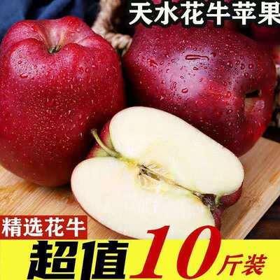 甘肃天水花牛苹果蛇果10斤/2斤老人孕妇宝宝辅食刮泥苹果粉面苹果