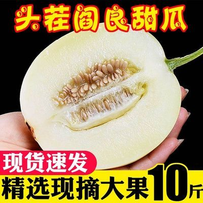 现摘云南阎良甜瓜5/10斤新鲜水果当季头茬香瓜蜜瓜脆甜小白瓜整箱