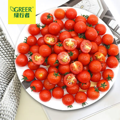 39624/【绿行者】西红柿新鲜现摘樱桃番茄小番茄孕妇水果沙拉材料生吃