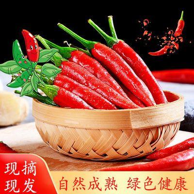 辣椒新鲜红辣椒 农家自种 绿色健康 应季蔬菜 现摘现发 整箱包邮
