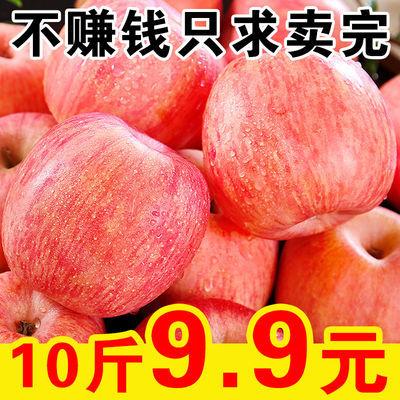 【大降价】红富士苹果10斤当季新鲜水果脆甜丑苹果孕妇水果5/3斤