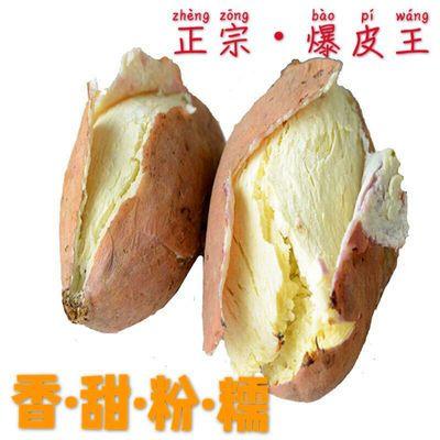 现挖新鲜爆皮白心番薯王干粉面包王红皮白心板栗红薯地瓜山芋