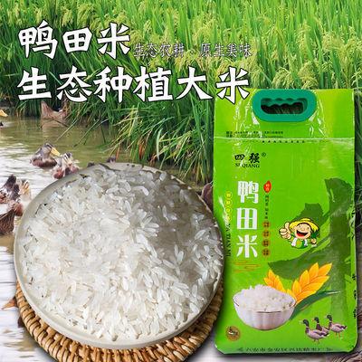 鸭田米生态长粒米农家自产鸭米绿色有机大米10斤袋装鸭稻米批发