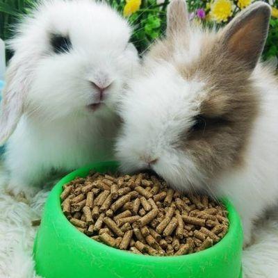 兔粮 5斤宠物幼兔成兔兔粮荷兰猪饲料用品2.5kg兔子饲料