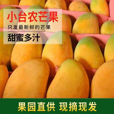 现摘小台农芒果新鲜热带水果超薄核鸡蛋小台芒当季贵妃芒包邮海南