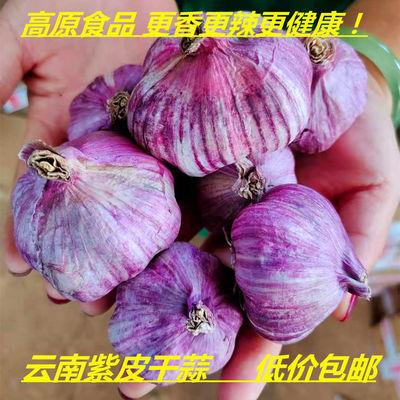 76331/【2021干紫皮大蒜】云南蒜紫皮大蒜香蒜红皮大蒜批发紫皮蒜1/10斤