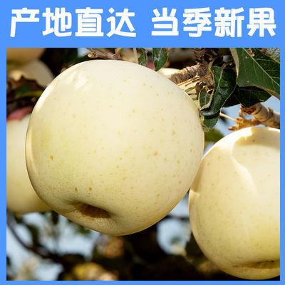 奶油富士苹果黄金山东烟台丑苹果水果脆甜新鲜水果批发整箱3斤5斤