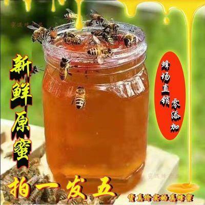 深山野生土蜂蜜天然正宗百花蜜洋槐蜜枣花蜜蜂农自产自销纯正蜂蜜