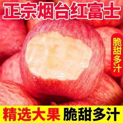 【坏果包赔】山东烟台苹果红富士现摘脆甜冰糖心孕妇水果整箱批发